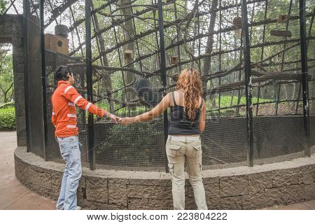 Chapultepec Zoo, Mexico City - October 29, 2009. An anonymous couple of young lovers hold hands while enjoying a visit to a Chapultepec Zoo in Mexico City.