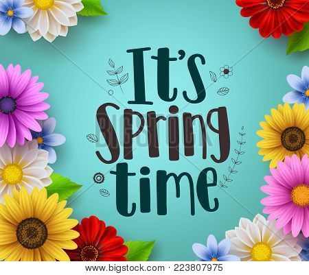 It's spring time text vector greeting design with colorful spring flower elements like daisy and sunflower in green floral background for spring season. Vector illustration.