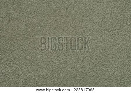 Green leather texture or leather background for design with copy space for text or image. Rough leather