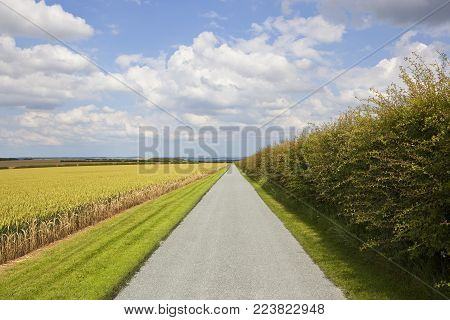 Country Road And Farm Gate