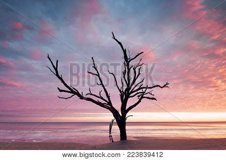 Botany Bay beach at cloudy sunset, Edisto Island, South Carolina, USA