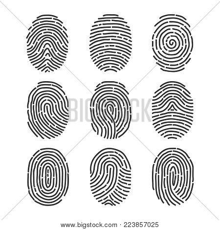 A fingerprint, a set of fingerprints. Flat design vector illustration, vector.