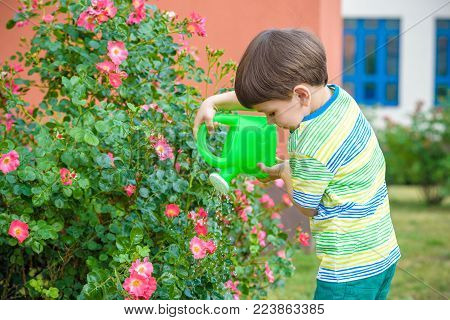 Cute Little Boy Watering Plants With Watering Can In The Garden. Activities With Children Outdoors.