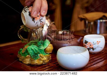 For a toad with coins, the master pours hot tea during a tea ceremony