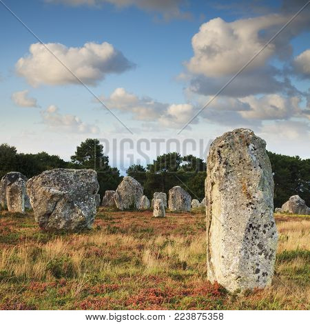 Some of the 3000 prehistoric megaliths at Carnac, Brittany, France, on a sunny autumn evening. The stones at this Unesco World Heritage Site are believed to date back 5000 years.