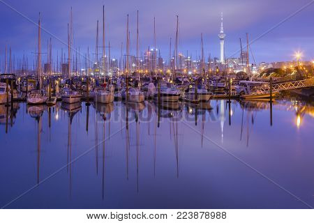 Westhaven Marina with the Auckland Skytower and the CBD.