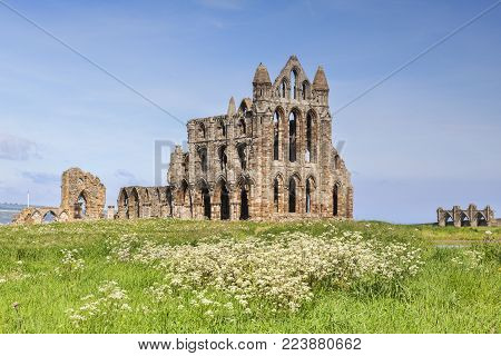 Whitby Abbey, North Yorkshire on a beautiful sunny spring day, with cow parsley in the foreground.