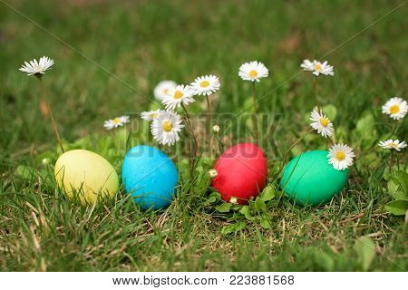 Four different color easter egs in a row