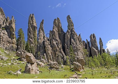 Dramatic Cathedral Spires in a Mountain Meadow in the Needles Section of Custer State Park in the Black Hills in South Dakota