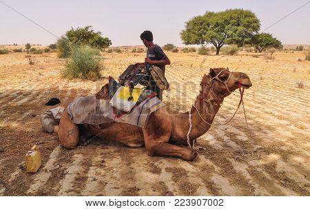 Jaisalmer, India - Mar 4, 2012. A Man With Camel On Thar Desert In Jaisalmer, India. Jaisalmer, The