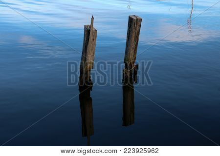 Old timber jetty pillars protruding from the sea