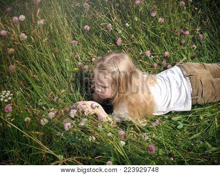 A little girl lies in tall grass. The child considers the clover flowers.