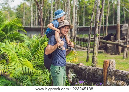 Father And Son At The Zoo. Spending Day With Family At The Zoo