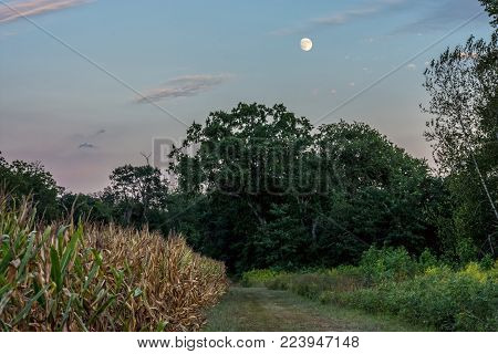 The Moon rises over this meadow in Monmouth Battlefield State Park in New Jersey.