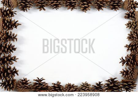 pine cone frame background with copy space