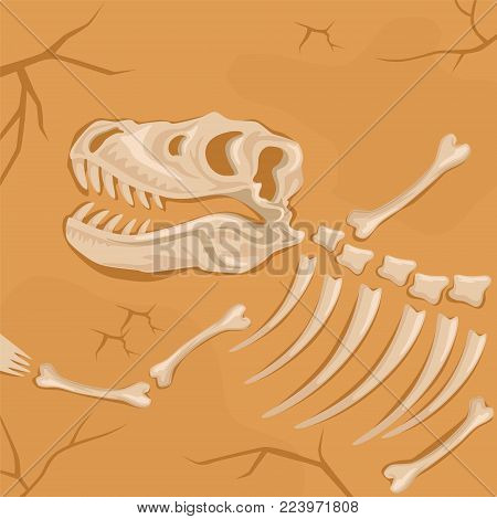 Fossilized bones and skull of dinosaur buried in the ground. Tyrannosaurus Rex. Archaeological excavations and paleontology concept. Ancient remains of prehistoric reptile. Cartoon flat vector design.