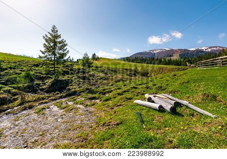dry weathered logs in mountainous rural area in spring. lovely countryside landscape with fence on a grassy slope near the coniferous forest. beautiful mountain ridge with snowy peaks in the distance