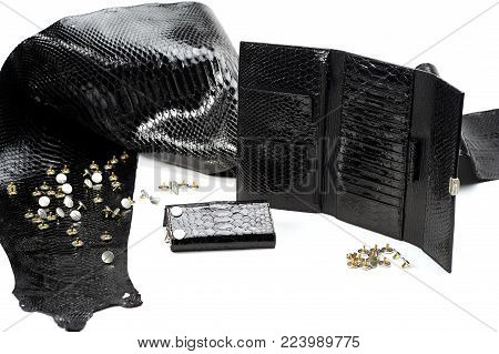 Glancy black leather pieces lay near woman s wallet with many sectors. They look like reptile skin. The smooth material lays on the white background. Also there are metallic studs near it.