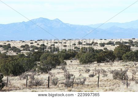 Landscape of New Mexico high desert near Santa Fe with mountain range, juniper trees and cholla cactus