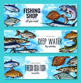 Fishing shop banners set of sea or ocean fishes. Vector sketch sea bass, marlin or tuna and navaga, horse mackerel, gilt-head bream or anchovy and eel, codfish and sardine for seafood or fish market poster