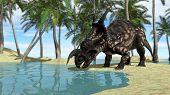 einiosaurus drinking water poster