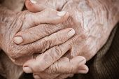 Hands Asian elderly woman grasps her hand on lap, pair of elderly wrinkled hands in prayer and Traces of hard work, World Kindness older and Adult care,  Mother day people concept poster