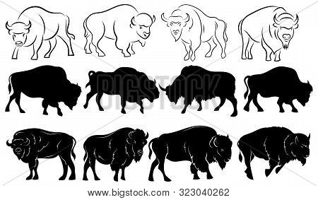 Set Of Bison. Collection Of Stylized Bison Silhouettes. Black And White Illustration Of A Large Horn