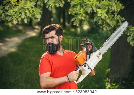 Professional Lumberjack Holding Chainsaw In The Forest. Lumberjack Holding The Chainsaw. Agriculture