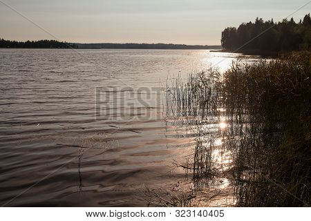 The Rising Sun Reflects Beautifully On The Lake Water At The Rural Finland. The Early Autumn Morning