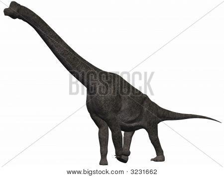 Brachiosaurus-3D Dinosaur