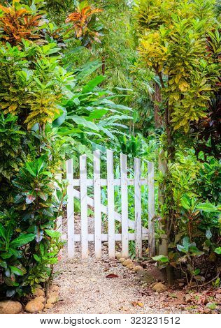 Small gate and footpath to a garden in Corcovado National Park in Costa Rica