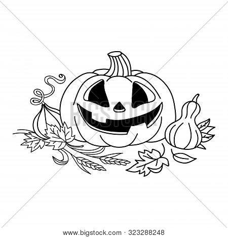 Sketch Pumpkin With Leaves. Pumpkin Vector Drawing. Isolated Outline Pumpkin Halloween. Hand Drawn H
