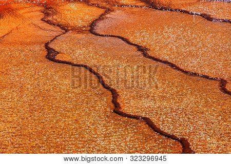Unique Geological Ground Formations At The Grand Prismatic Spring In Yellowstone National Park. It I