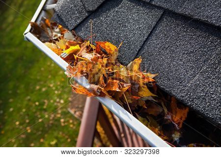 Autumn leaves  clogging a rain gutter on a roof