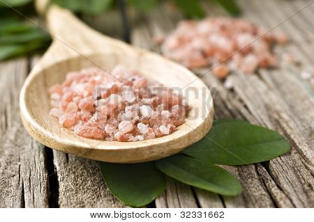 Course pink Himalayan on a wooden spoon - very shallow depth of field
