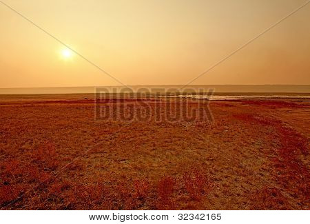 Dried-up Salt Lake