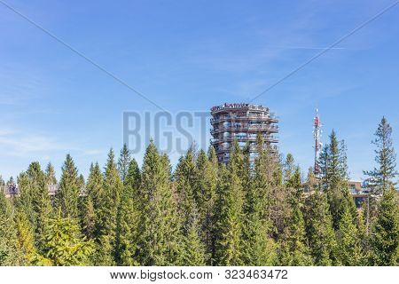 Zdiar, Bachledova Dolina, Slovakia - September 14, 2019 The Treetop Walk Bachledka In High Tatra Mou