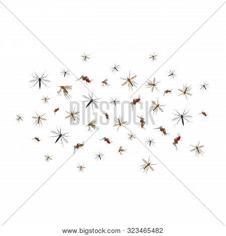Cartoon Color Different Mosquito Flock Icon Set Insect Symbol Of Malaria, Epidemic And Pest. Vector