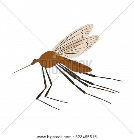Cartoon Color Mosquito Insect Symbol Of Malaria, Epidemic And Pest. Vector Illustration Of Dangerous