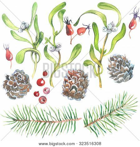 Christmas Watercolor Set With Mistletoe, Spruce Branches, Cone, And Fir Sprigs With Berries Isolated