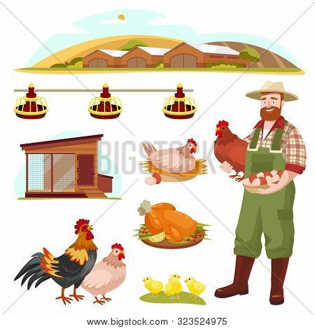 Poultry Farm Fowl, Equipment And Farmer, Isolated On White Background. Vector Flat Cartoon Illustrat