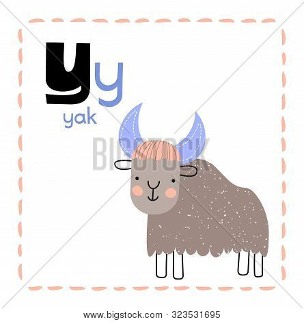 Cartoon Alphabet Letter Y For Yak For Teaching Kids To Read And Write, With Upper And Lower Case Tex