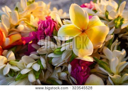 Close-up Of A Bouquet Of Tropical Flowers Used For A Destination Wedding With A Sandy Beach In The B