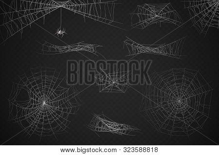 Spider Web. Cobweb Silhouette For Halloween Decoration, Gossamer Trap. Scary Horror Webs, Spooky Gar
