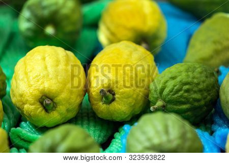 Jewish holiday Sukkot. Etrog is a ritual citrus fruit for celebratory prayer. Jerusalem.  counter are laid out excellent citruses - etrogs. The concept of religious, ethnographic and photo tourism