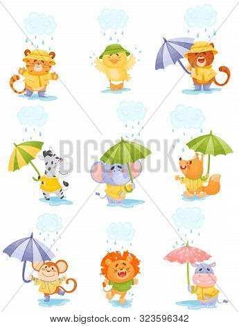 Cartoon Humanized Animals Walk In The Rain. Vector Illustration.