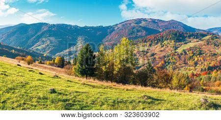 Wonderful Sunny Autumn Day In Mountains. Panoramic Views Of Carpathian Rural Landscape. Trees In Col