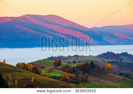 Magical Sunrise In Mountains. Valley Full Of Fog. Beautiful Autumn Scenery. Trees In Colorful Foliag