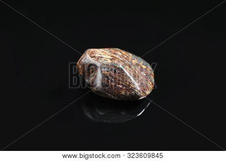Beautiful Brown Bronzite Gemstone On Black Background