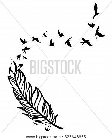 Feather And Birds. Black And White Vector Illustration Of Stylized Feather With Silhouettes Of Flock